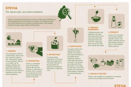 stevia.infographic