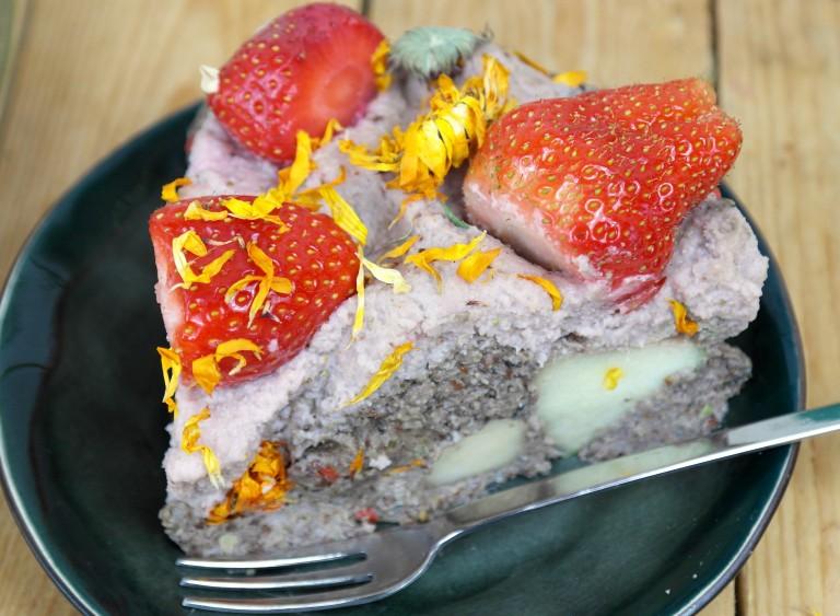 aap raw aardbeien-sijstaart