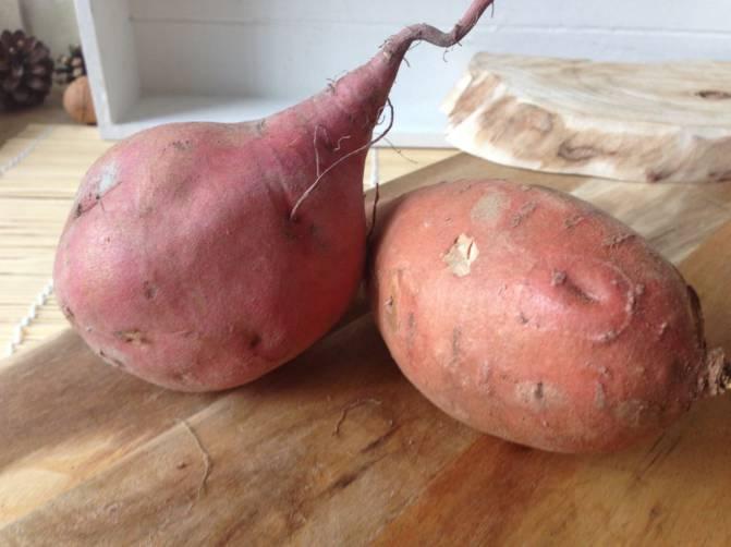 zoete-aardappelen-twee