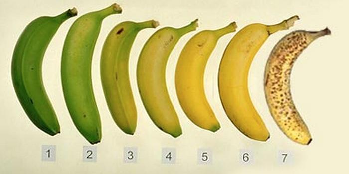 bananen-700x350-700x350