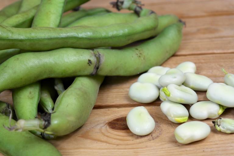 hoe lang moeten tuinbonen koken