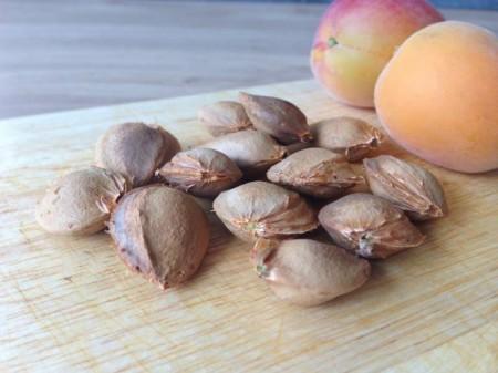 abrikoos:perzikpitten