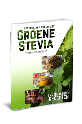 ebook cover voor internet
