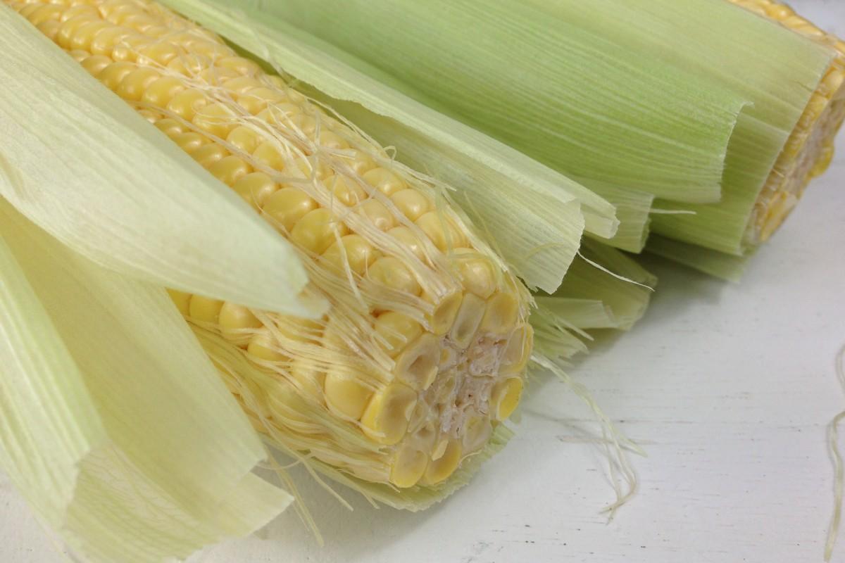 hoe gezond en ongezond is maïs? - monique van der vloed
