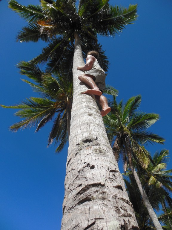 RG_founder_picking_coconuts