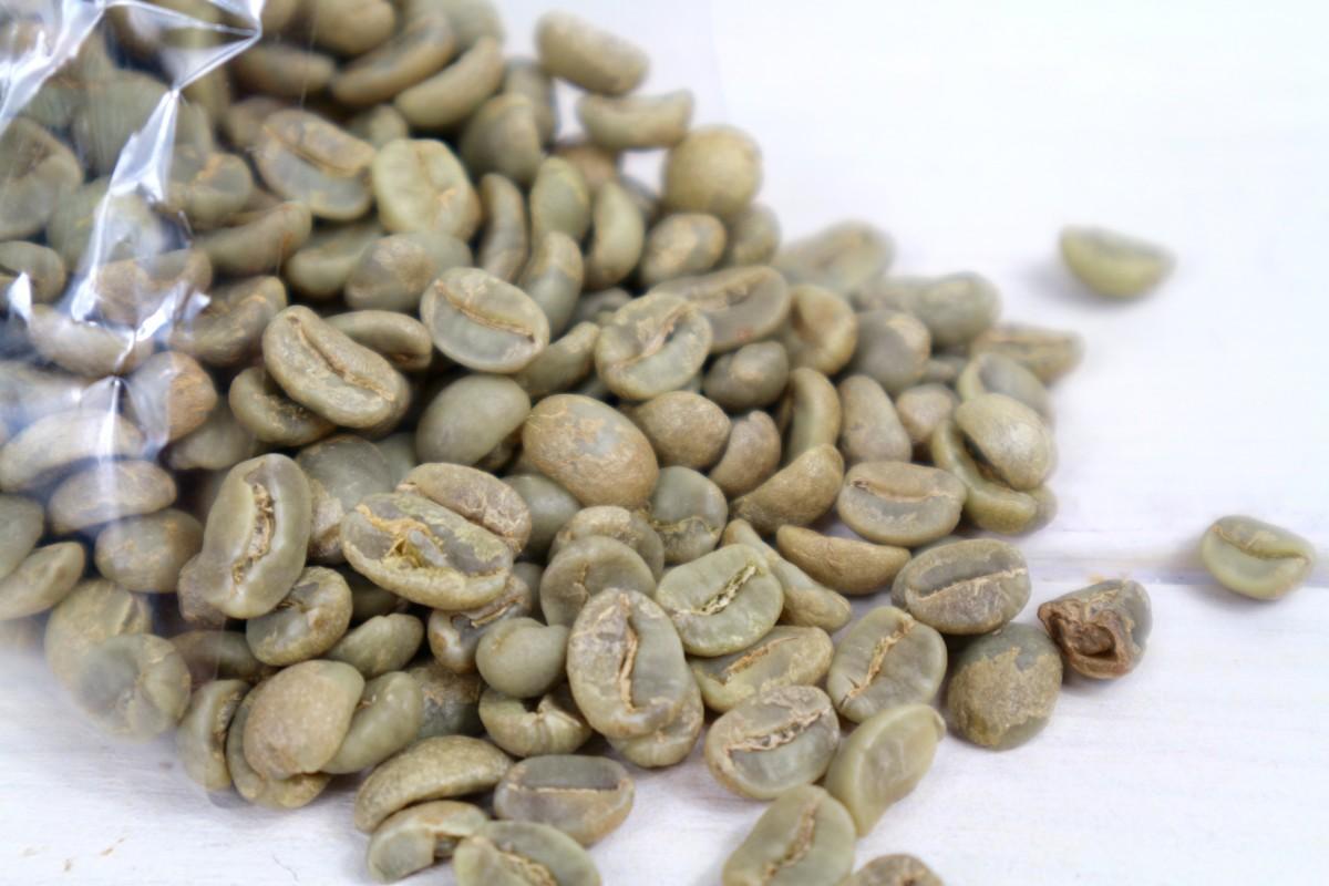 Verwonderlijk Groene koffie - Monique van der Vloed FR-66